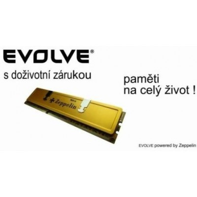 EVOLVE by Zeppelin DDR II 1GB 800MHz EVOLVE GOLD (box), CL5 (doživotní záruka)