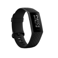 Fitbit Charge 4 (NFC, GPS, FitbitPay) Black/Black