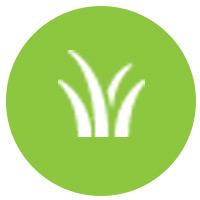 zahradní hnojiva