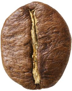Zrnková káva Robusta