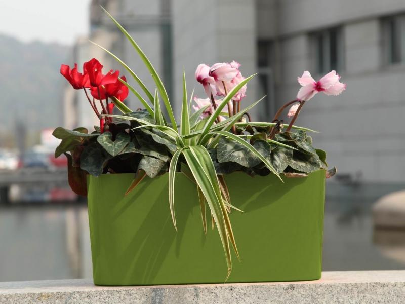 Květináč G21 Combi 56x28 cm - Zelený