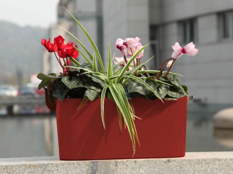 Květináč G21 Combi 56x28 cm - Červený