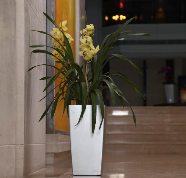 Květináč G21 Linea Small 28 cm - Bílý