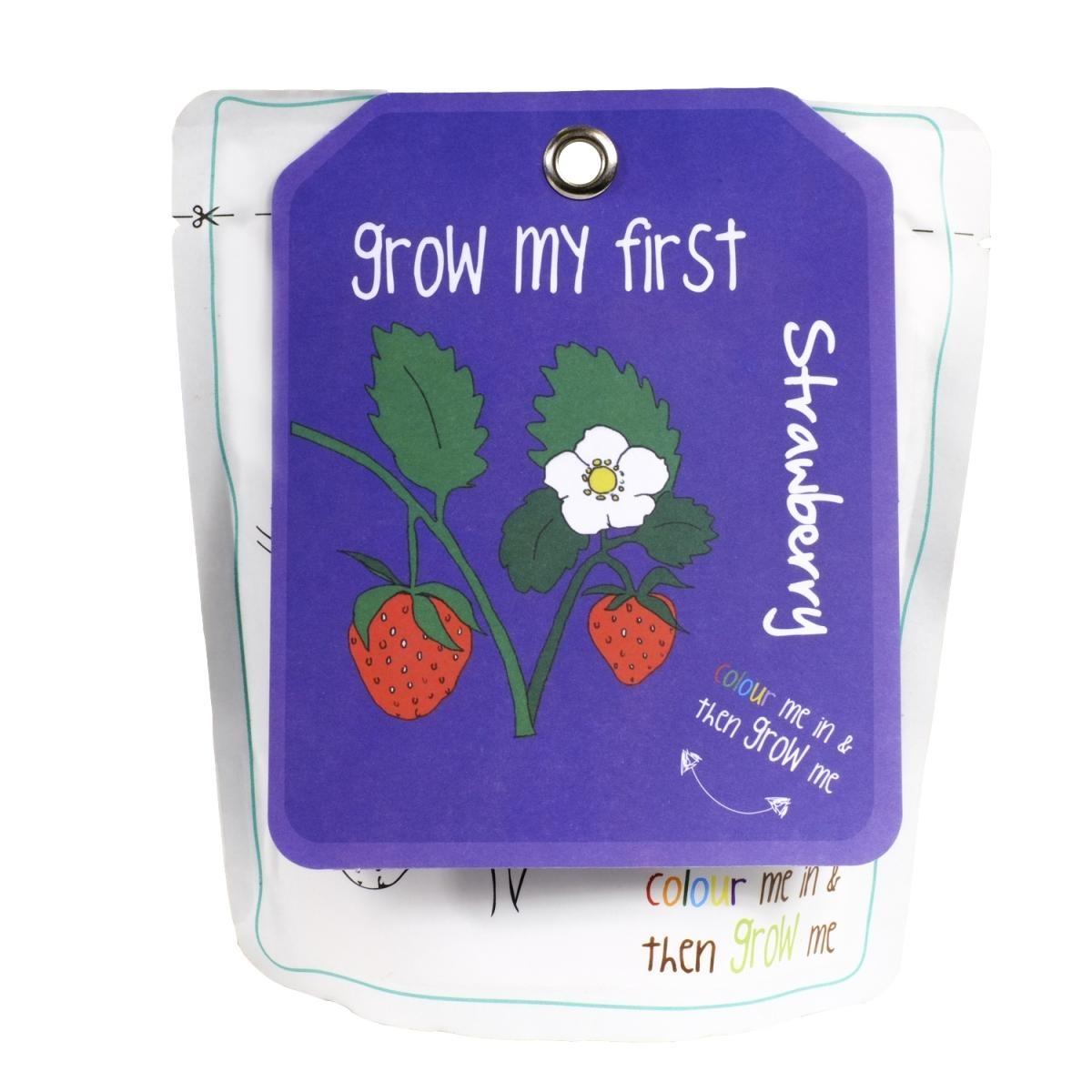 Domácí zahrádka Canova Grow My First - jahody