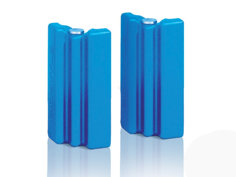 Chladící vložka k boxům a termo taškám Gio Style 2x 200